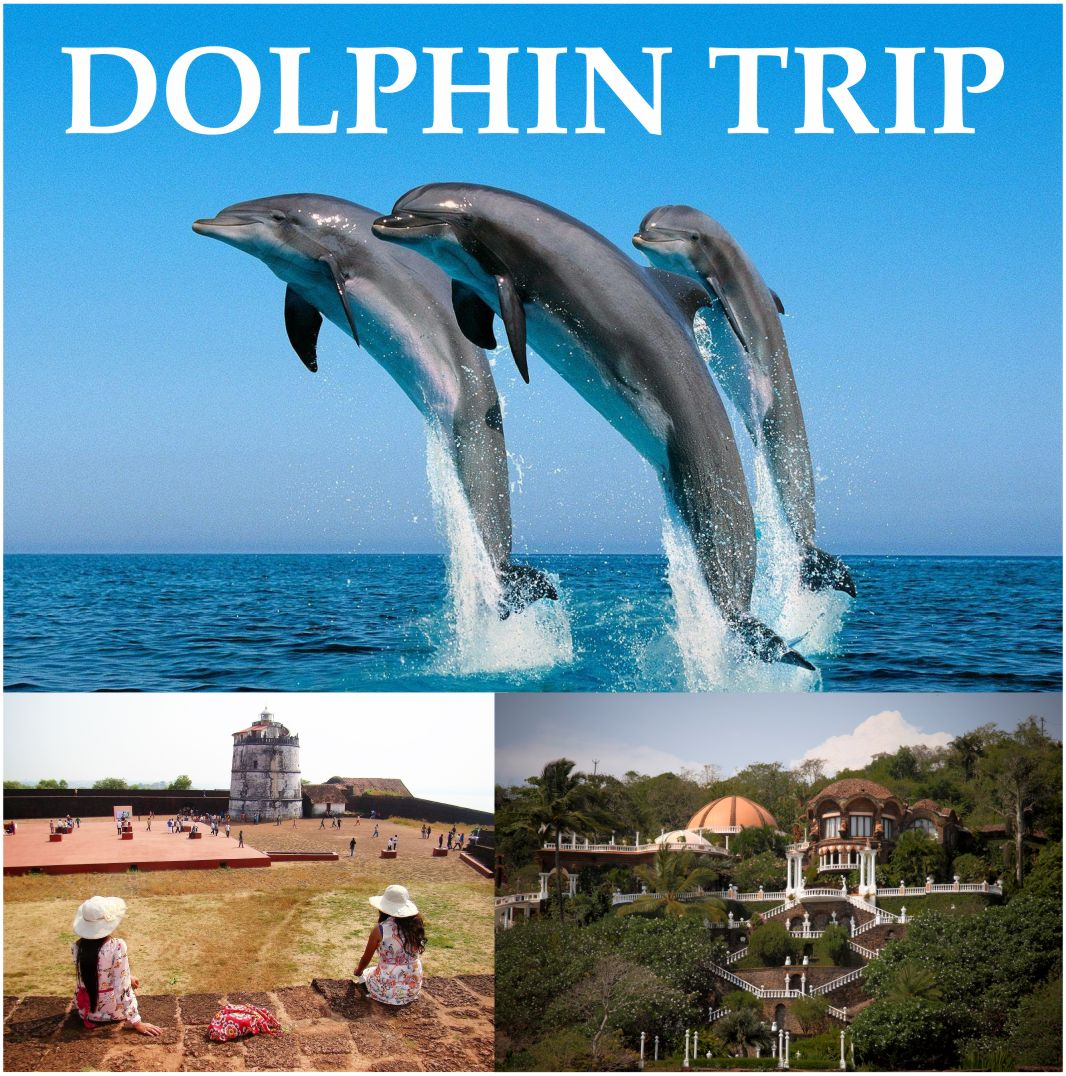 Grand Island Trip in Goa @1300/- with Snorkelling and Monkey beach