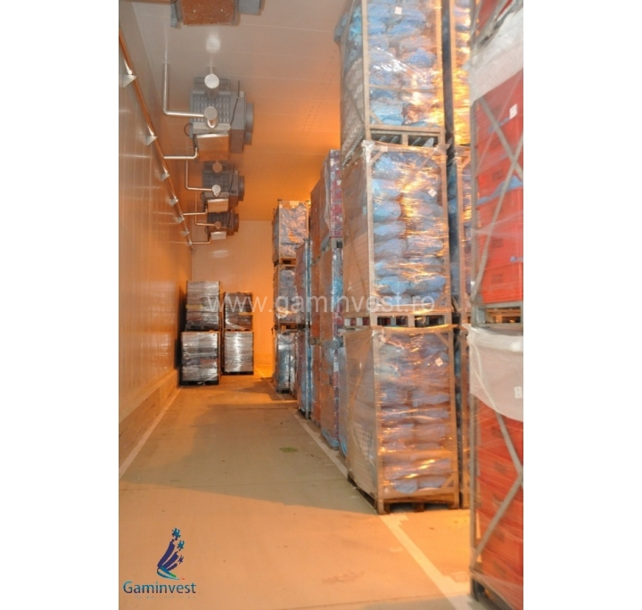 For sale Refrigerated warehouse in Hungary near Romania V1513