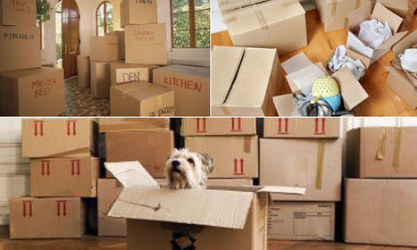 Hire best Packers And Movers near you in Noida