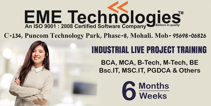 Image for 6 Month Industrial Training In Chandigarh