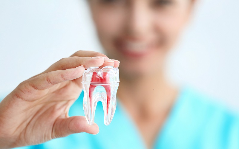 Best Dentist in Chennai - Lybrtae