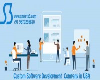 Image for Custom Software Development Company In USA, UK
