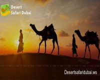 Image for Best Desert Safari in Dubai – Desertsafaridubai.ws