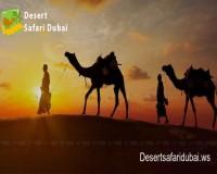 Image for Best Desert Safari in Dubai – Desertsafaridubai.ws