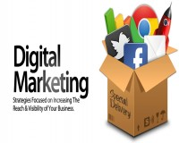 Image for SEO Expert in Jaipur