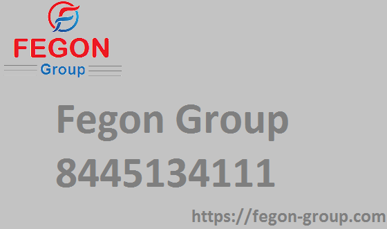Fegon Group | 8445134111 | Internet and Network Security