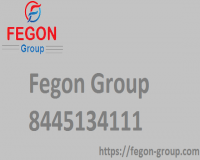Image for Fegon Group | 8445134111 | Internet and Network Security