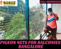 Image for Pigeon net in bangalore