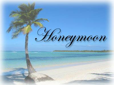 Image for Honeymoon Packages in India