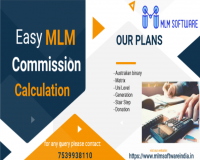 Image for MLM Software in Salem