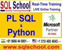Image for Python Practical Live Online Training