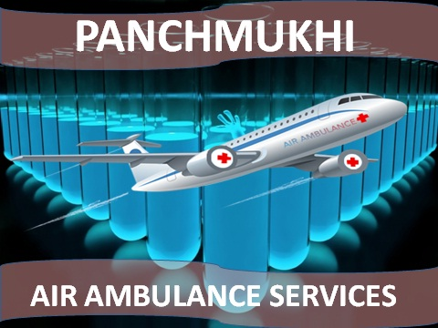 Affordable Emergency Air Ambulance from Allahabad to Delhi