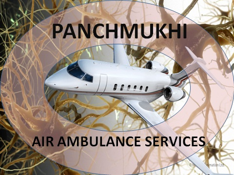 Medical Transport Services by Air Ambulance from Patna to Delhi