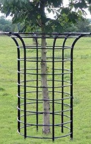 Image for Iron Garden Tree Guards, Metal Tree Guards at Factory Price