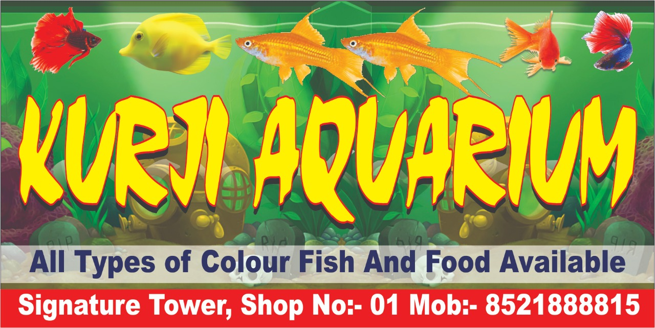 Image for Kurji Aquarium Shop
