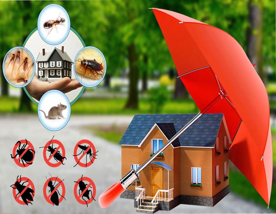 Image for Inzila Pest Control Services