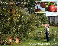 Image for Apple Tree Spray Oil