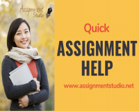Image for Best assignment service online