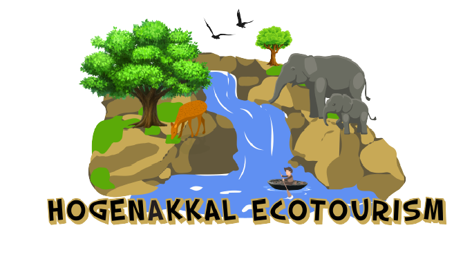 Image for  Hogenakkal Eco-Tourism | Tour Packages & Online Room Booking