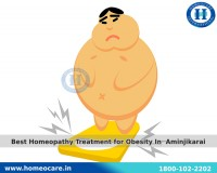 Image for Best Homeopathy Treatment for Obesity In  Aminjikarai