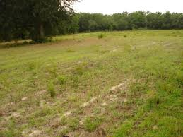 Industrial land for sale at Dhulagarh, Panchla, Ulluberia, Bagnan, Kol