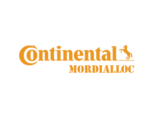 Image for Car Service Mordialloc - Continental Mordialloc