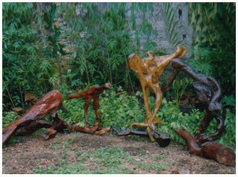 Image for Wonders Of The Wild Sea | Bay Island Driftwood Museum