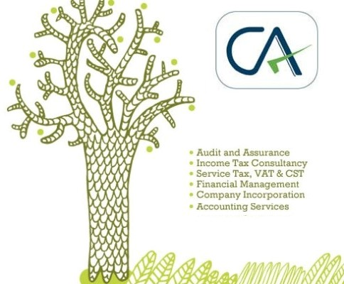 Image for Tax Advisor in India | Chartered Accountant in Delhi | Raaas